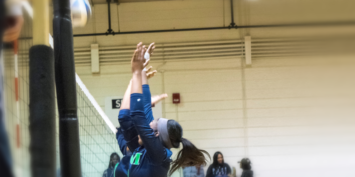 Allegany College of Maryland Volleyball